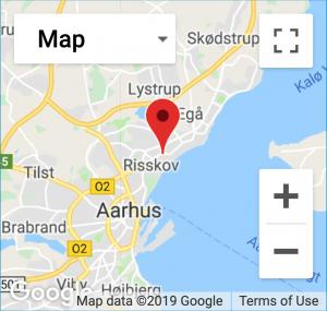 Google Maps Navigation Find vej
